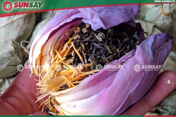 Trà hoa sen giữ nguyên màu sắc khi sấy thăng hoa