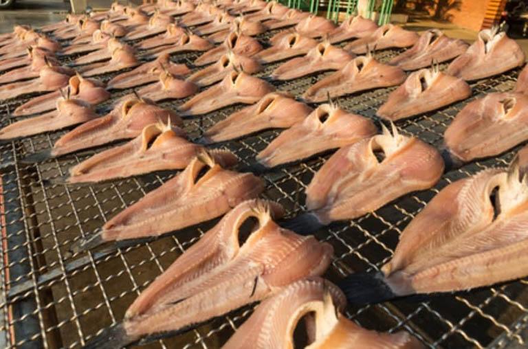 Câu trả lời cho câu hỏi máy sấy cá khô giá bao nhiêu?